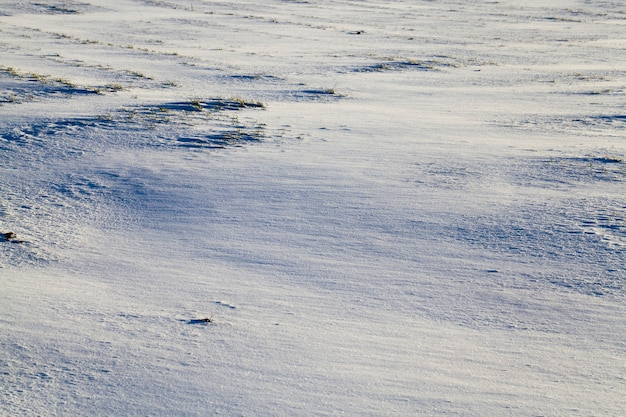 Piękne zimowe zbliżenie z drogą i innymi roślinami