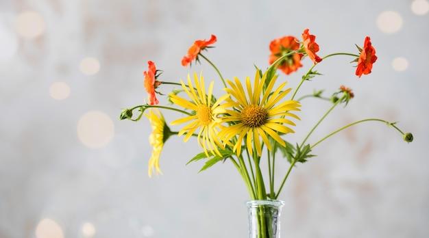 Piękne żółte i czerwone polne kwiaty na świetle