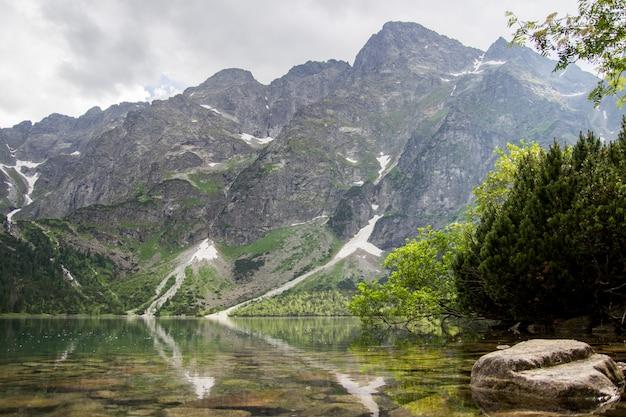 Pięknego lata alpejski halny jeziorny widok zakrywający w zielonych drzewach i świetle słonecznym w niebie. odbicie góry w wodzie. krystalicznie czysta woda. europa, alpy.