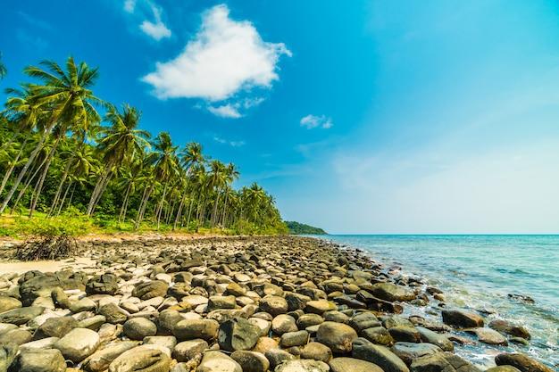 Pięknej przyrody tropikalnej plaży