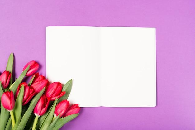 Piękni czerwoni tulipany i rozpieczętowany notatnik z pustym papierem na purpurowym tle. szczęśliwego dnia matki. miejsce na tekst. kartka z życzeniami. koncepcja wakacje. skopiuj miejsce, widok z góry. urodziny. skopiuj miejsce widok z góry