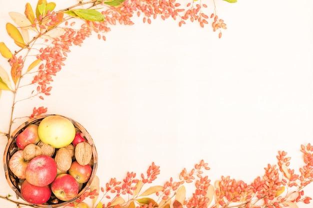 Pięknie ułożone jesienne jagody na białym tle