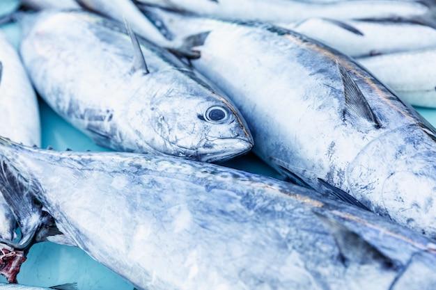 Pięknie ułożony na blacie jest świeży połów ryb.