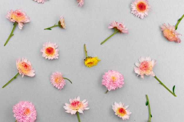 Pięknie wykonane z jasnych pąków kwiatowych płasko układają się
