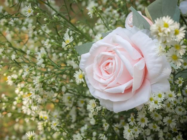 Piękno różowa róża ornament z białymi kwiatkami na zielonych liściach.