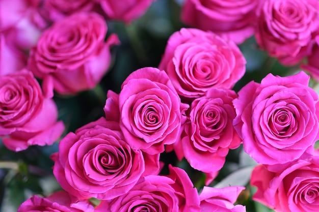 Piękny abstrakcyjny szablon z różowym bukietem róż w tle