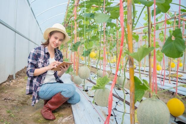 Piękny azjatykci średniorolny czeka klienta rozkaz od pastylka komputeru przed zbierać melon na jej gospodarstwie rolnym mienia pastylki komputer i uśmiechy.