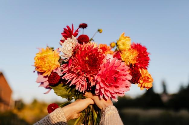 Piękny bukiet kolorowych kwiatów