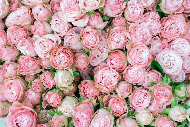 Piękny bukiet kwiatów. dekoracyjne naturalne tło kwiatowy.