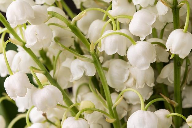 Piękny bukiet kwiatów konwalii.