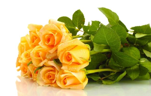 Piękny bukiet róż na białym tle