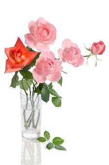 Piękny bukiet róż w szklanym wazonie na białym tle