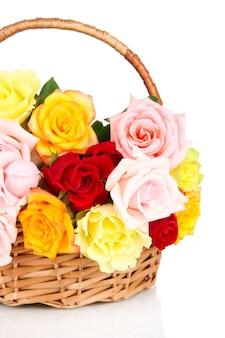 Piękny bukiet róż w wiklinowym koszu na białym tle