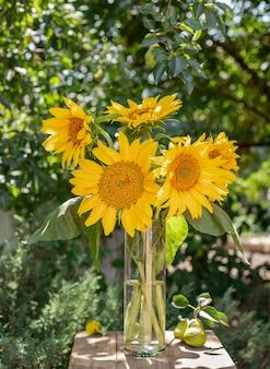 Piękny bukiet żółci słoneczniki na ogrodowym tle