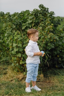 Piękny chłopiec bawi się bąbelkami w słoneczny dzień w ogrodzie.