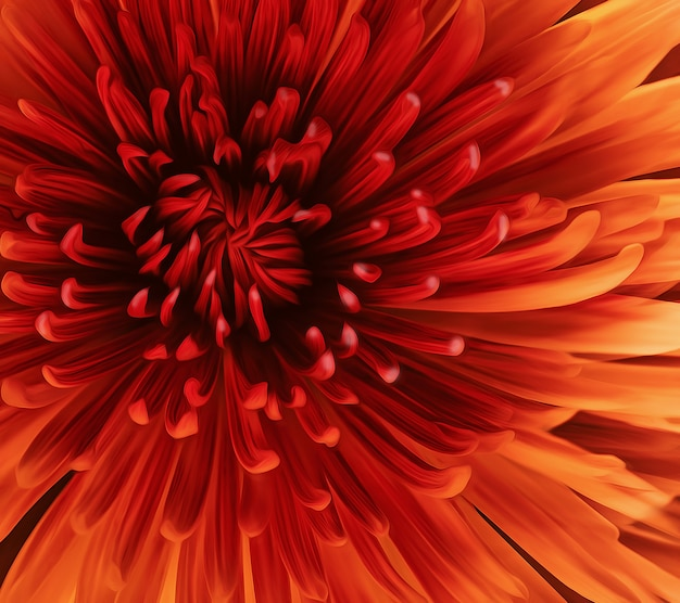 Piękny czerwony kwiat z bliska na pełnym ekranie. efekt malarstwa olejnego.