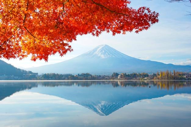 Piękny czerwony liść klonu z mt.fuji w japonii jesienią.