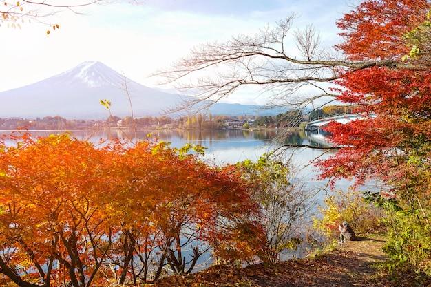 Piękny czerwony liść klonu z mtfuji w japonii jesienią