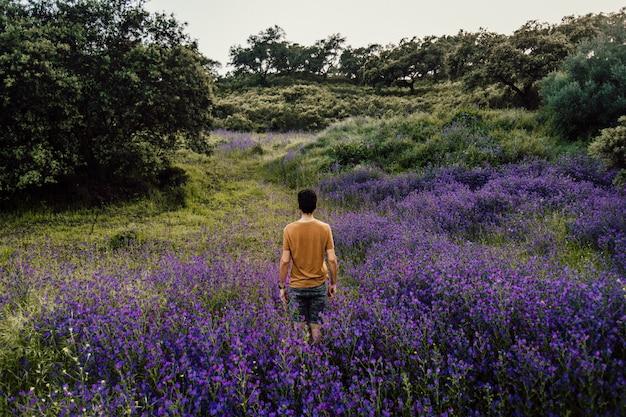 Piękny długi strzał osoba stoi wśród stosu lawendowych kwiatów w naturze