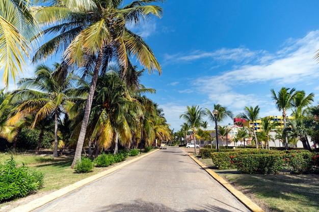 Piękny dom wśród palm na tropikalnej wyspie na południu. luksusowy dom widziany przez drzewa i ogród.