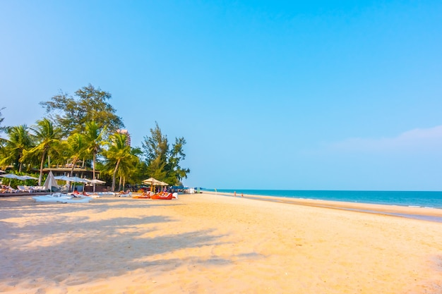 Piękny drzewko palmowe na plaży