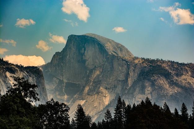 Piękny duży krajobraz górski i leśny