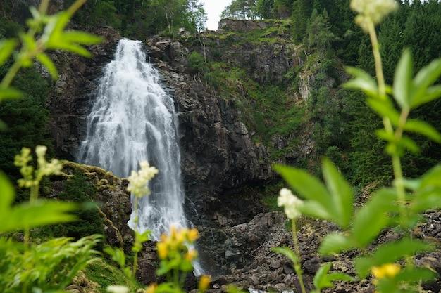 Piękny, gładki wodospad w norwegii otoczony fiordami zielonymi trawami.