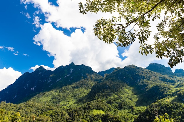 Piękny góra krajobraz w chiang dao, chiang mai, tajlandia