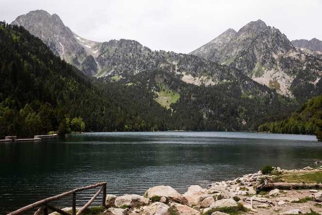 Piękny górski krajobraz leśny