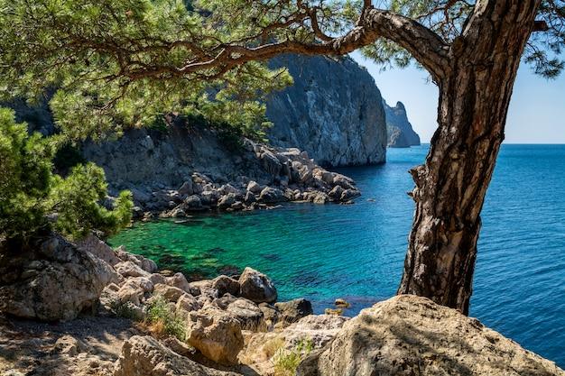 Piękny górski krajobraz z lasem, morzem i skałami.