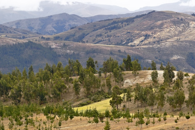 Piękny górzysty krajobraz sierra w orcotuna w peru