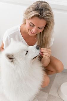 Piękny i uroczy pies i kobieta