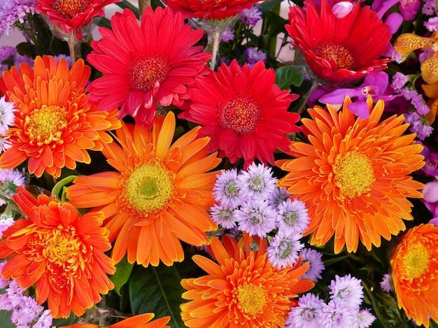 Piękny jasny bukiet kwiatów gerbera stokrotka kwiatowe tło