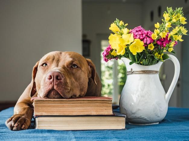 Piękny, jasny bukiet kwiatów i uroczy szczeniaczek