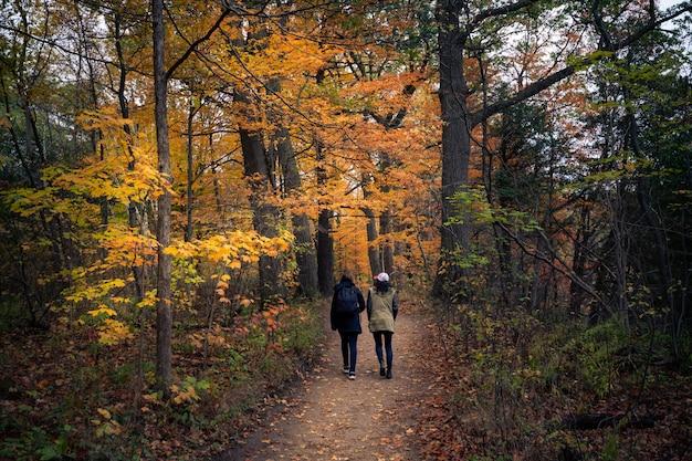 Piękny jesień krajobraz w kanadzie