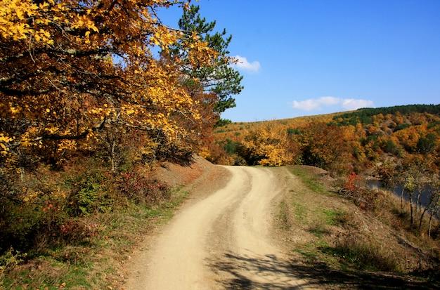 Piękny jesień krajobraz w słonecznym dniu.