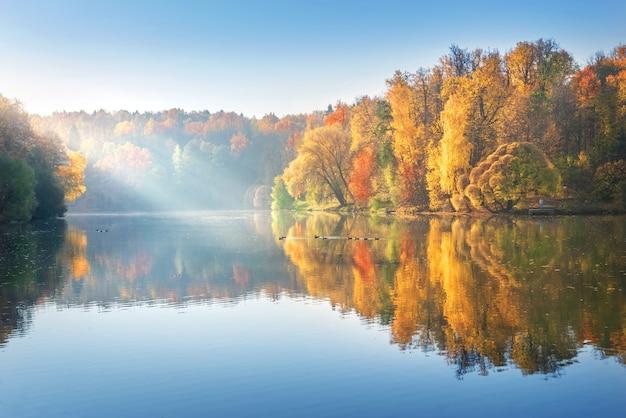 Piękny jesienny krajobraz kolorowych drzew z odbiciem w stawie