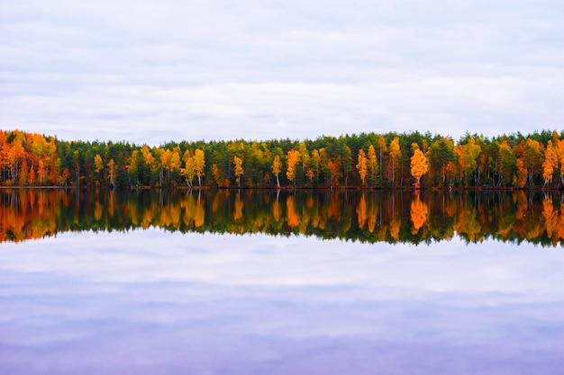 Piękny jesienny krajobraz. odbicie jesiennego lasu w jeziorze.