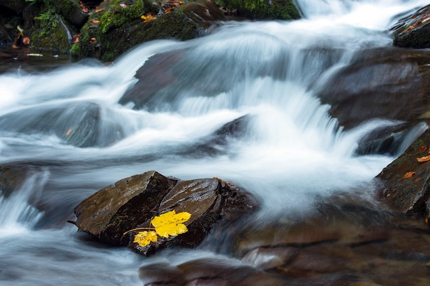 Piękny jesienny krajobraz w górach karpaty w lesie