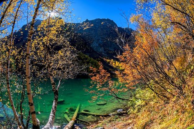 Piękny jesienny krajobraz z czystą zieloną wodą górskiego jeziora