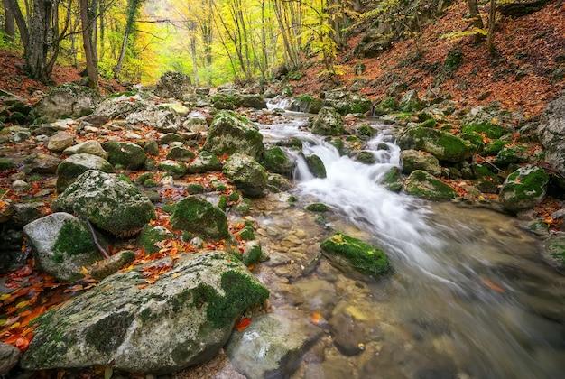 Piękny jesienny krajobraz z górską rzeką i kolorowymi drzewami. las górski
