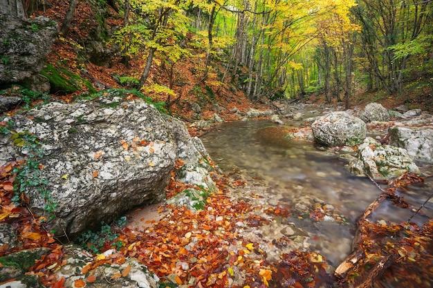 Piękny jesienny krajobraz z górską rzeką i kolorowymi drzewami z zielonymi, czerwonymi, żółtymi i pomarańczowymi liśćmi.