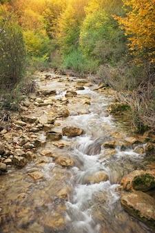 Piękny jesienny krajobraz z górską rzeką. las górski na krymie.