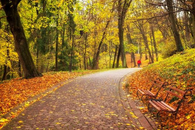 Piękny jesienny park miejski i chodnik