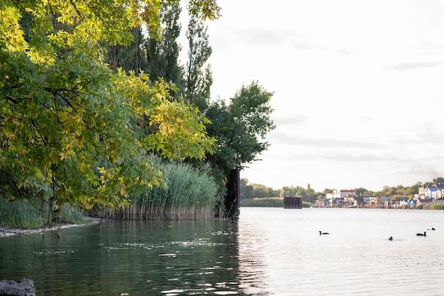 Piękny kolorowy letni naturalny krajobraz