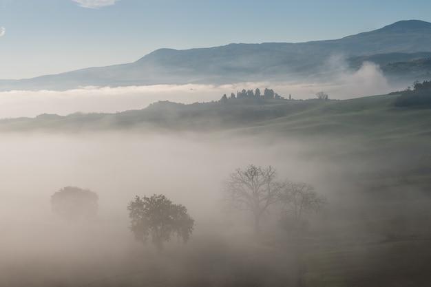 Piękny krajobraz agricaltural ze wzgórzami i drzewami, obraz toskanii
