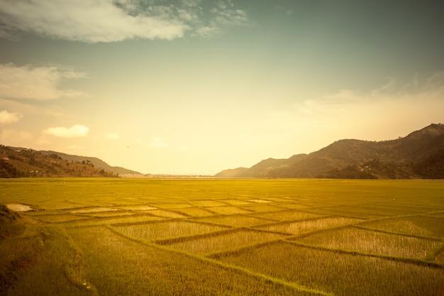 Piękny krajobraz azji. naturalne tło