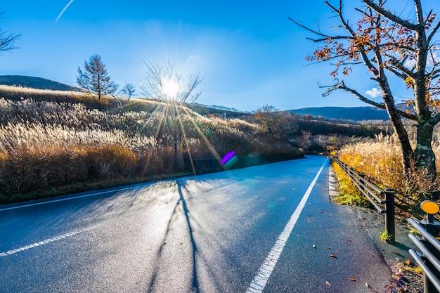 Piękny krajobraz drogi strona wokoło halnego fuji