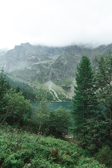 Piękny krajobraz gór i jeziora