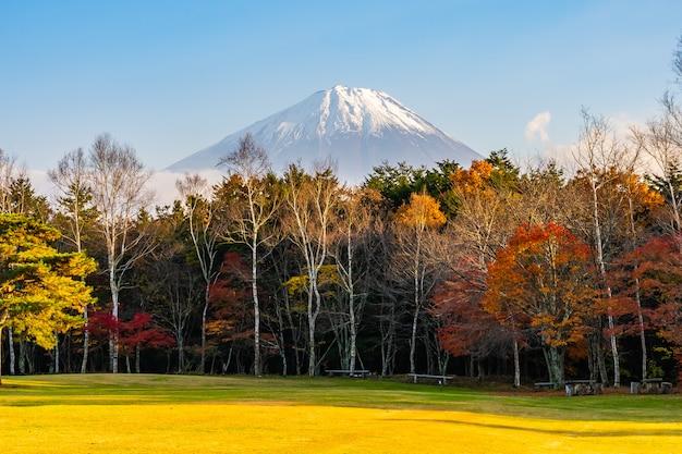 Piękny krajobraz górski fuji